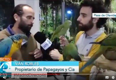 RAFA RODRIGO DE MADRID DIRECTO EN PAPAGAYOS Y CÍA